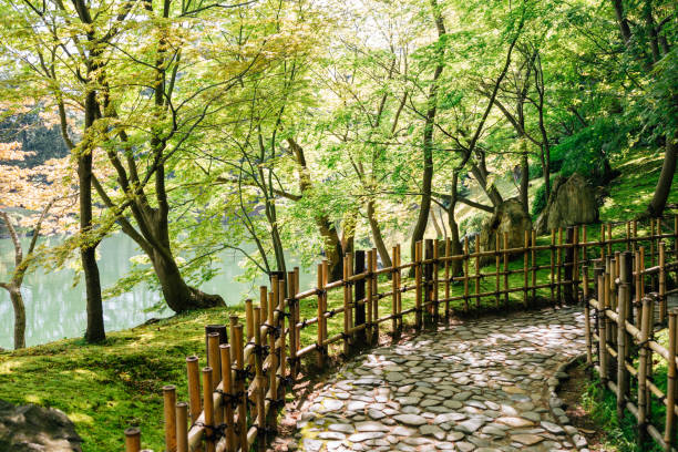Japanese traditional garden stock photo