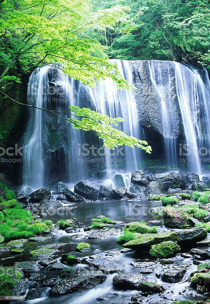 Japanese Waterfall royalty-free stock photo