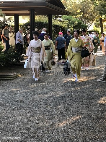There is a wedding taking place today in the Sankeien garden of Yokohama and a large group of Japanese women dressed in their traditional kimono styles carrying totes, handbags and gift bags make their way through tourist crowd to the wedding ceremony.