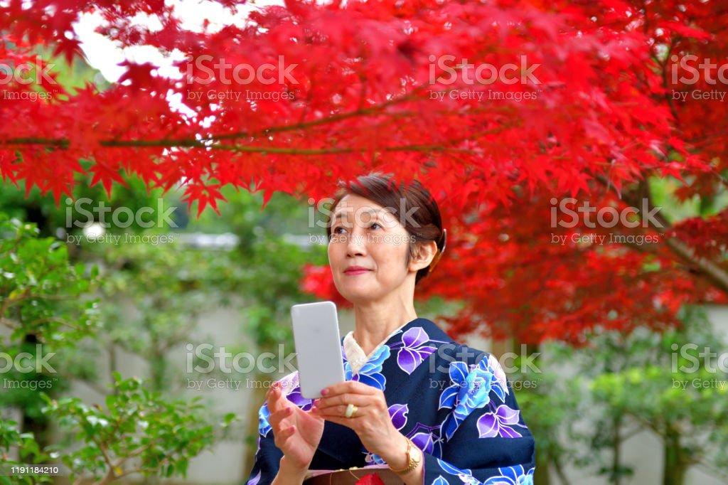 Japanische Frau in Kimono schätzen bunte Herbst Laub in Kyoto - Lizenzfrei 60-64 Jahre Stock-Foto