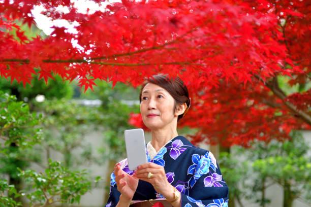 Japanische Frau in Kimono schätzen bunte Herbst Laub in Kyoto – Foto