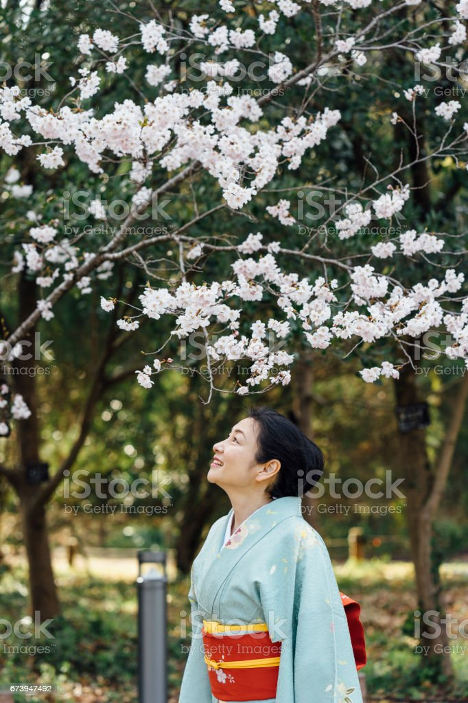 Japanese woman with typical yukata clothes under cherry tree