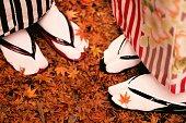 着物姿の日本女性の足