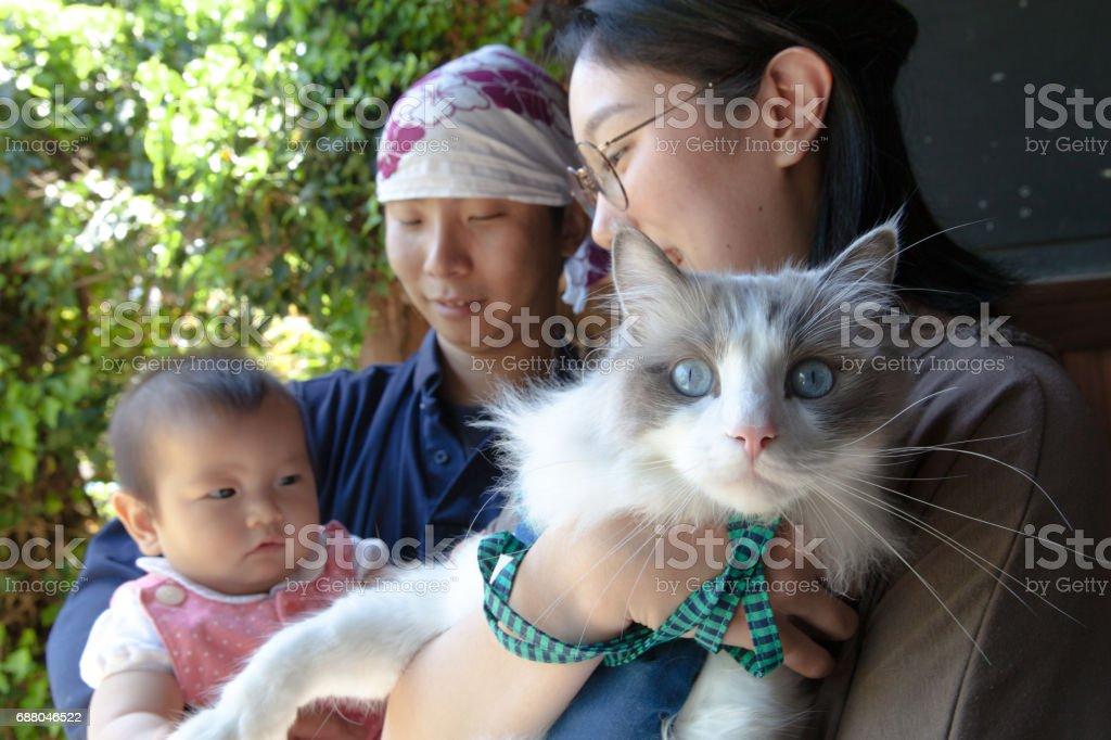 Gato y familia joven japonesa - foto de stock