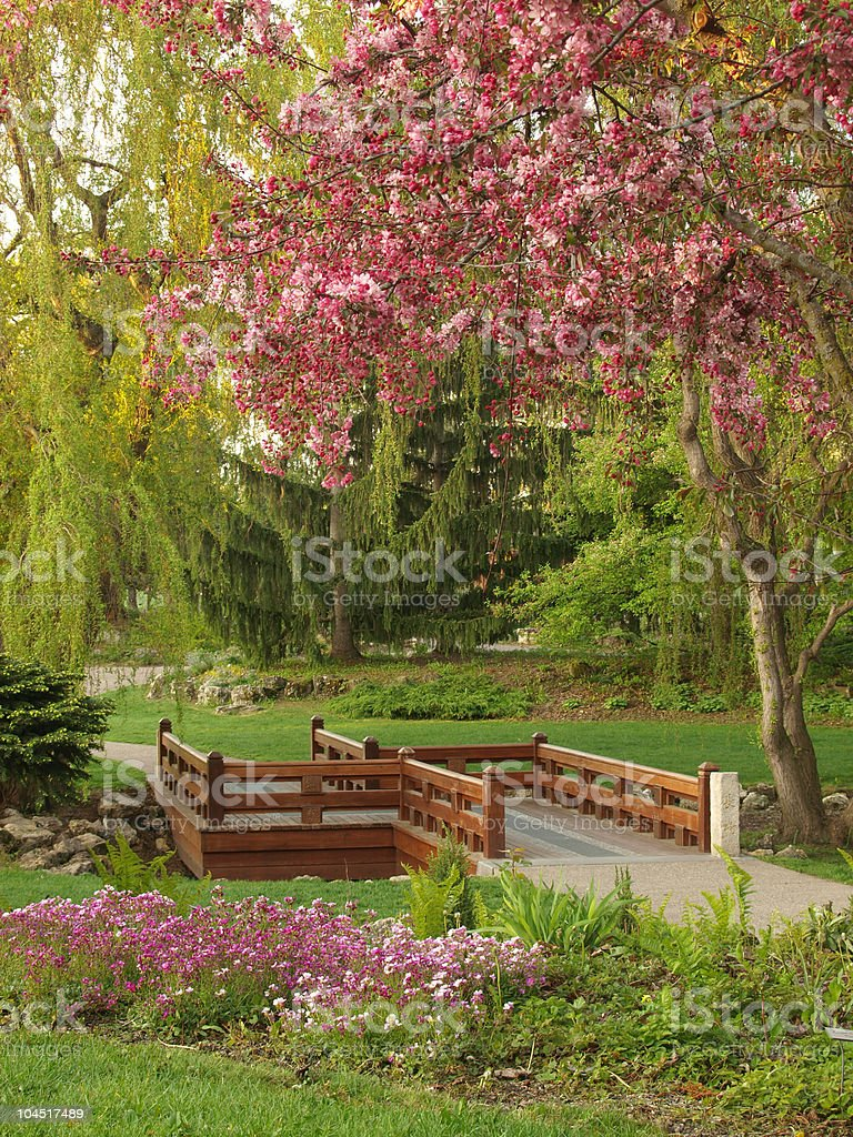 Japanese-style Bridge and Spring Flowers royalty-free stock photo