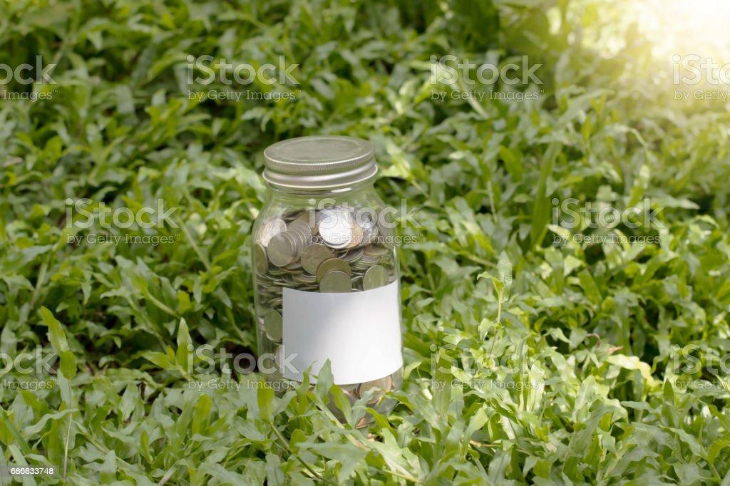 Jar money concept stock photo