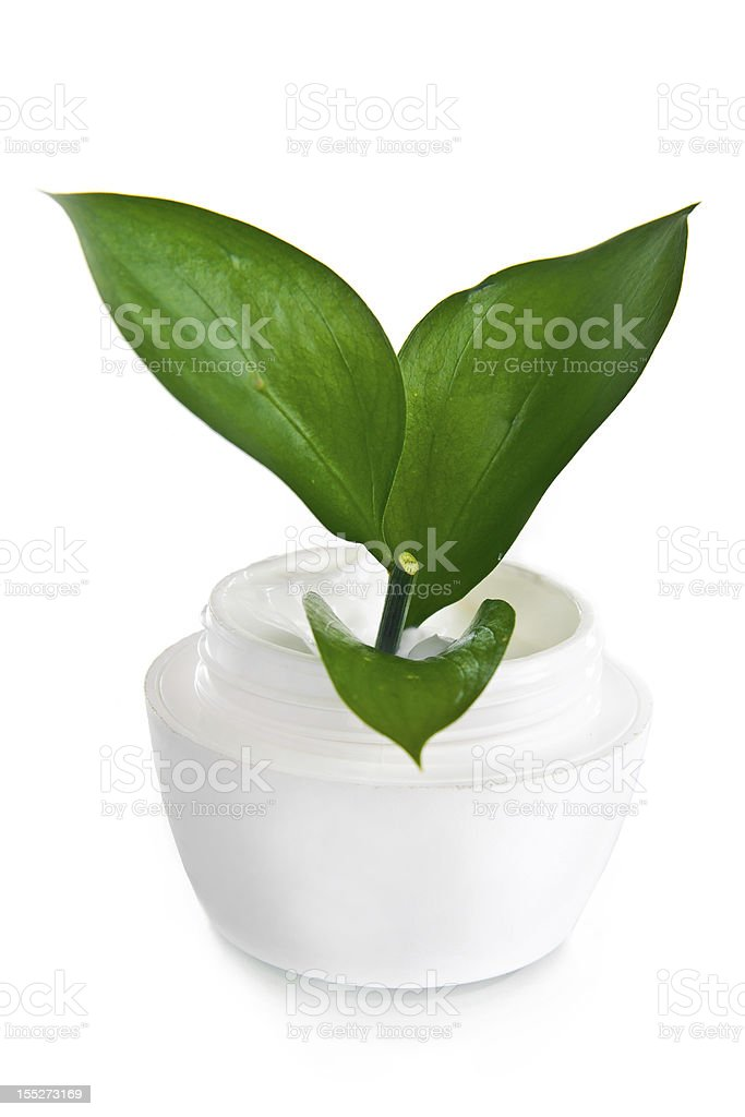jar of face cream on white background with green leaves royalty-free stock photo