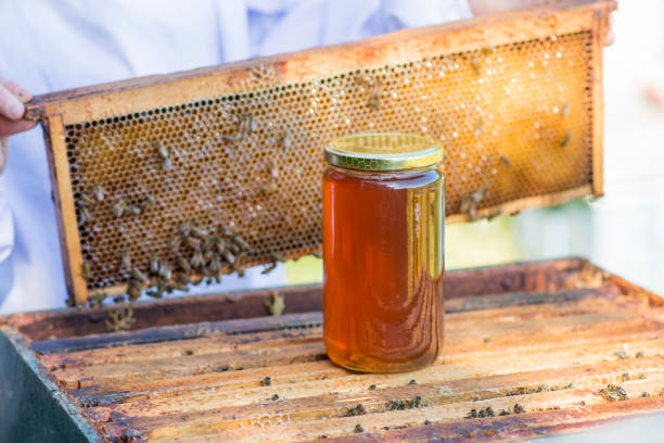 Jar of Honey on a Bee Hive stock photo