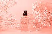 シュッコンカスミソウの小枝をキャップなしの香水の瓶。