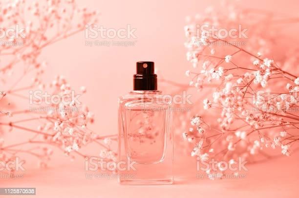 Химия запаха цветов