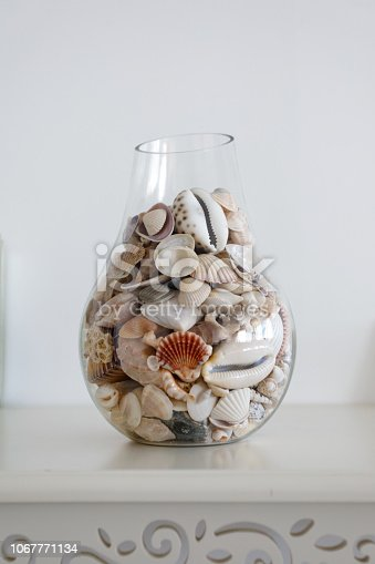 Jar Of Sea Shells as home decor