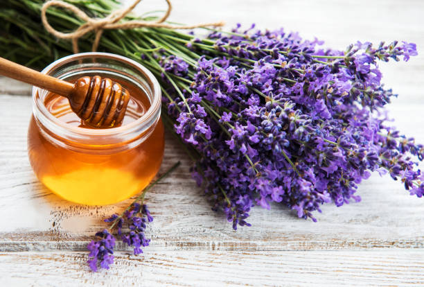 jar with honey and fresh lavender - miele foto e immagini stock