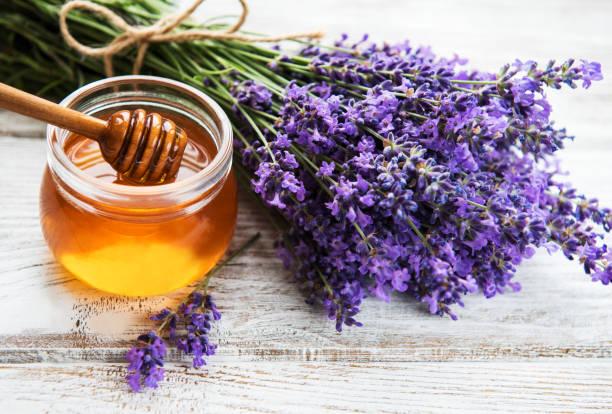 jar with honey and fresh lavender - mel imagens e fotografias de stock