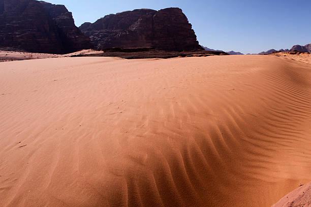jaras-desert-jordan stock photo
