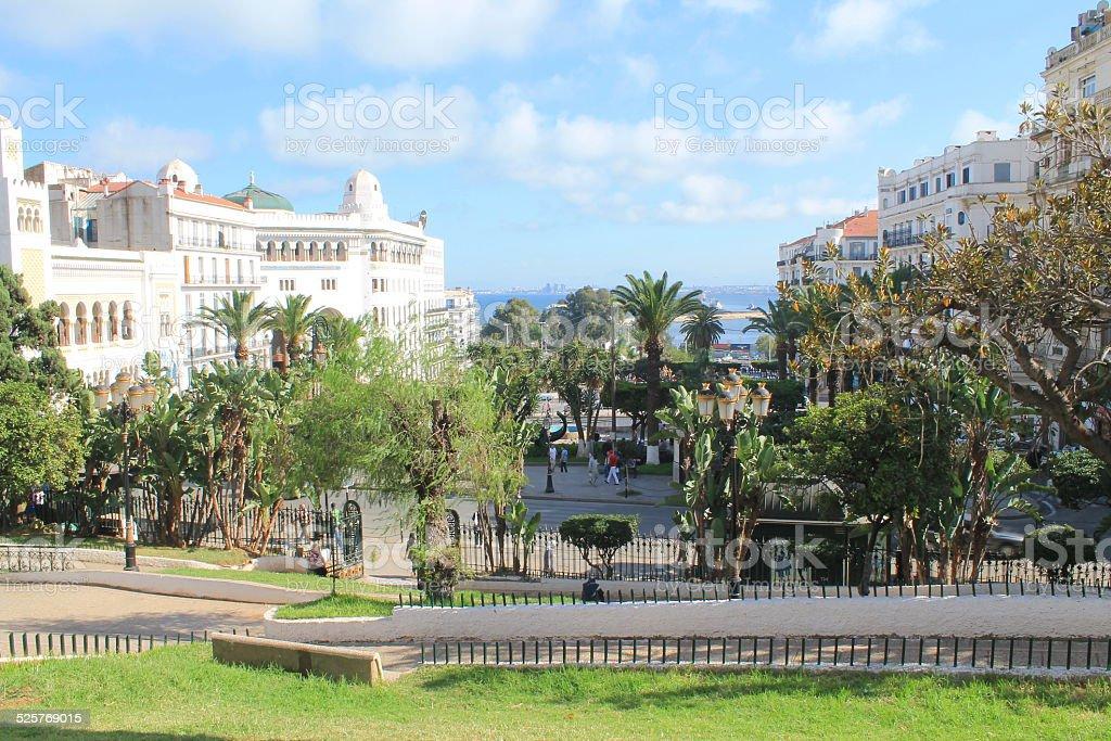 Jardin de l''forloge florale à Alger - Photo