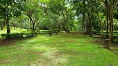 Jardin du temple de Prasat Muang Tam