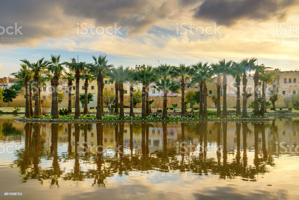 Jardin Jnan Sbil, Royal Garden in Fes. Morroco stock photo