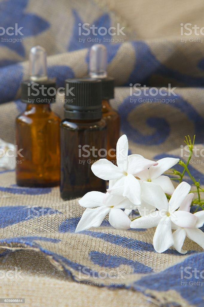 Jasmine blossoms stock photo