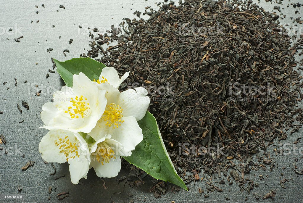 Jasmine tea crop stock photo
