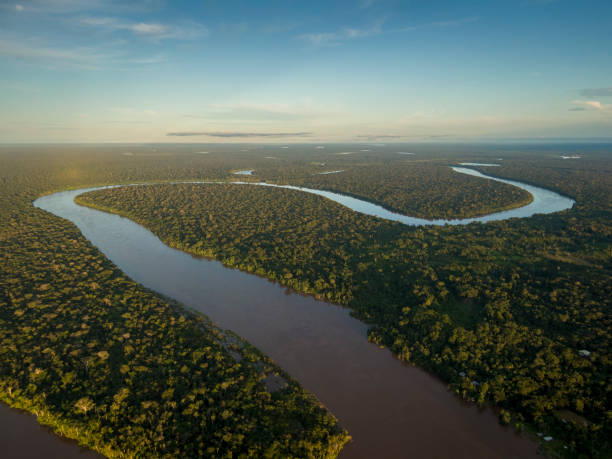 Javari River Javari river shot from drone during sunset amazon region stock pictures, royalty-free photos & images
