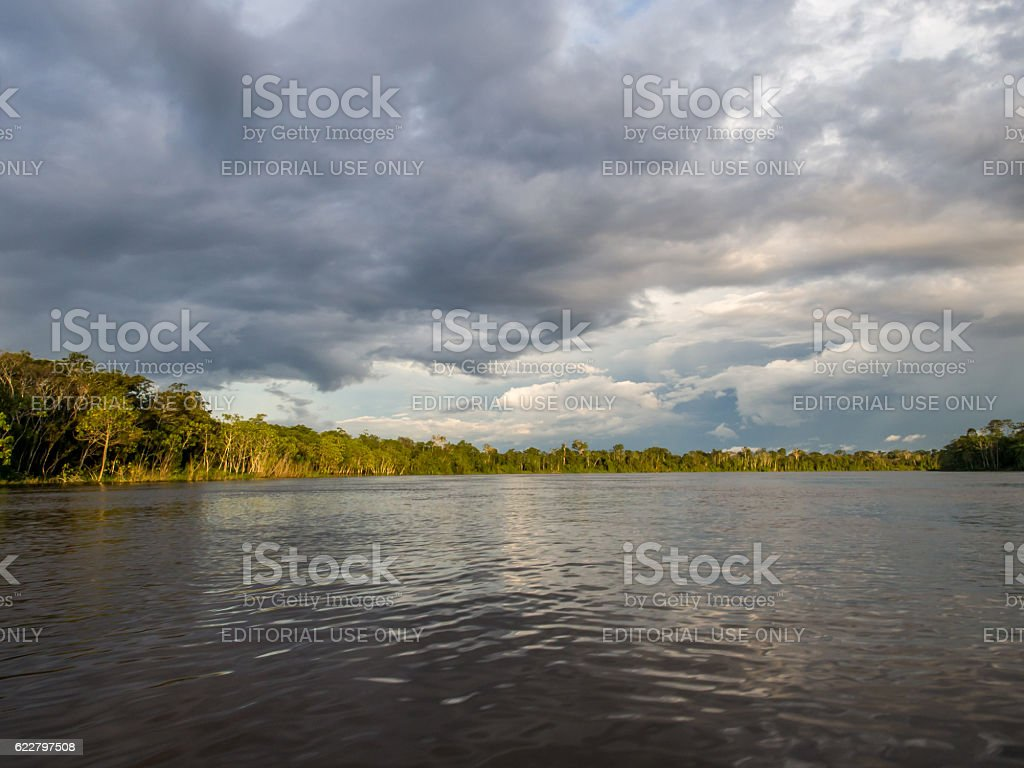 Javari River stock photo