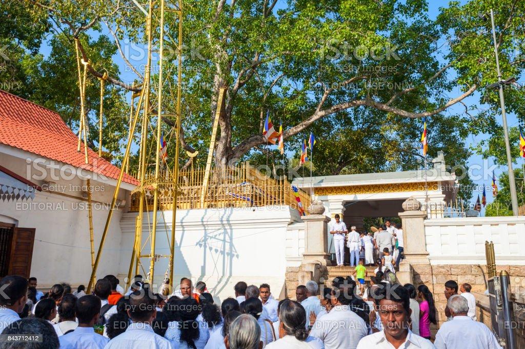 Jaya Sri Maha Bodhi stock photo