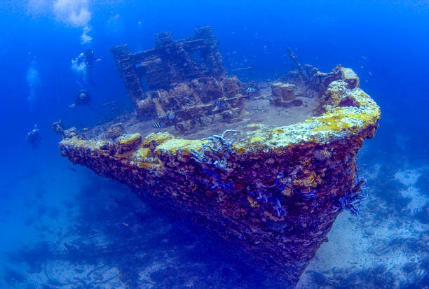 jayne c shipwreck,& divers, aruba - shipwreck stock pictures, royalty-free photos & images