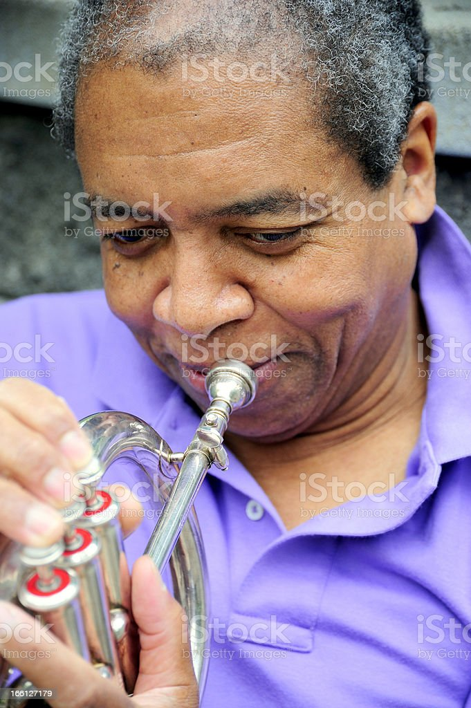 Jazz musician. royalty-free stock photo