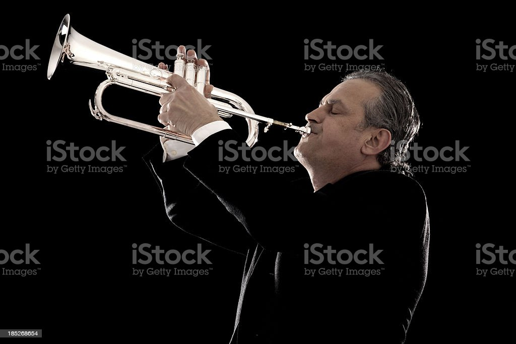 Jazz Musician royalty-free stock photo