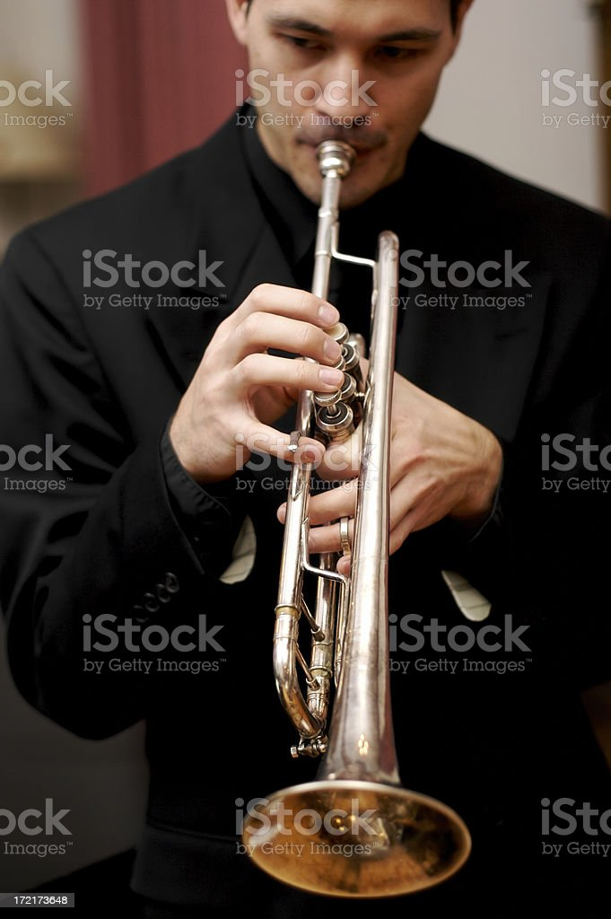 Jazz Series royalty-free stock photo