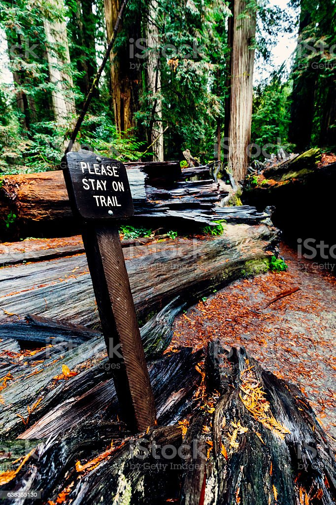 Jedediah Smith Redwoods State Park trail sign, California stock photo