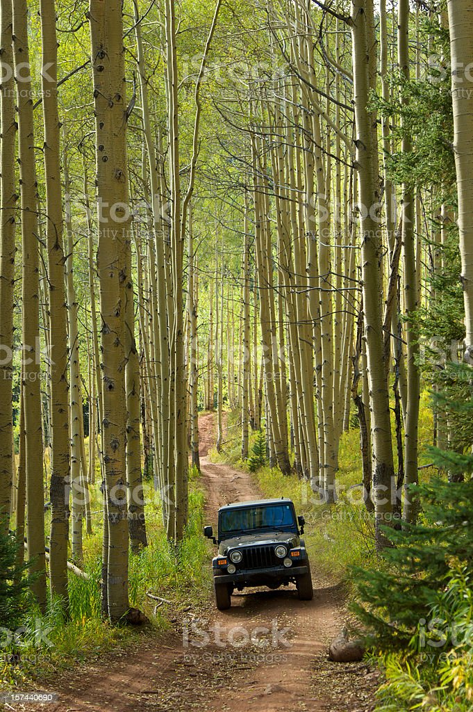Jeep in the Aspens stock photo