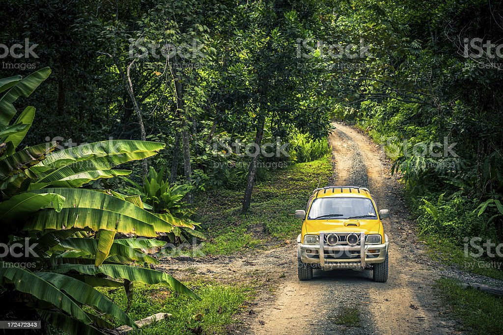 Jeep in the Forest, Jungle Adventure stock photo