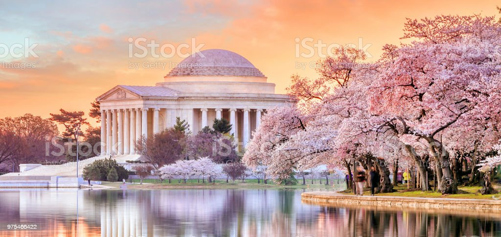 Jefferson Memorial during the Cherry Blossom Festival stock photo