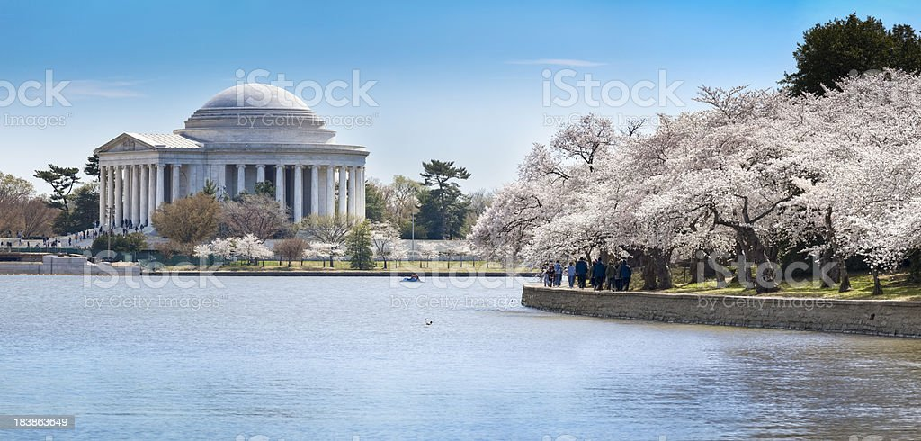 Jefferson Memorial, Tidal Basin and Cherry Blossoms in Full Bloom royalty-free stock photo