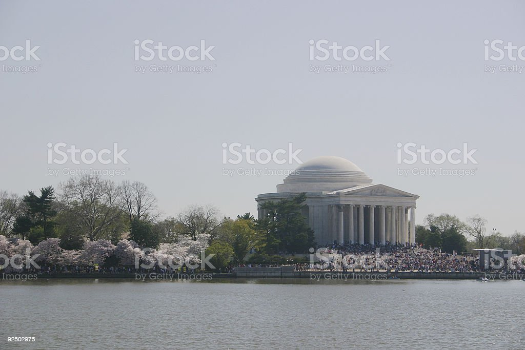 jefferson memorial w/ blossoms royalty-free stock photo