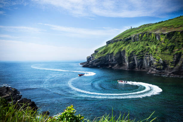 jeju island in summer - jeju island stock photos and pictures