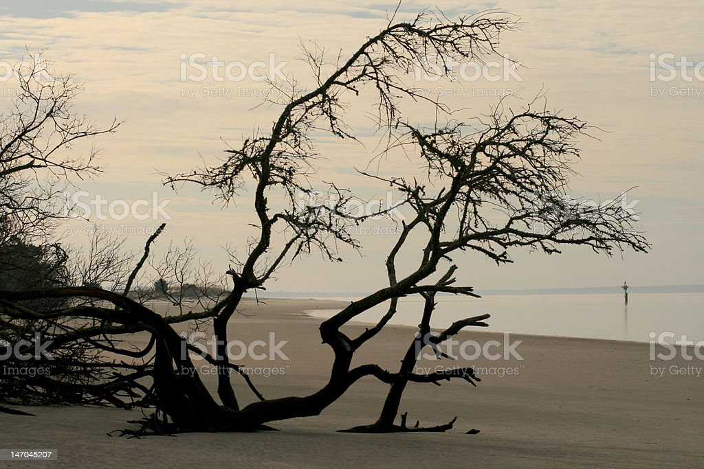 Jekyll Island St. Andrews Beach royalty-free stock photo