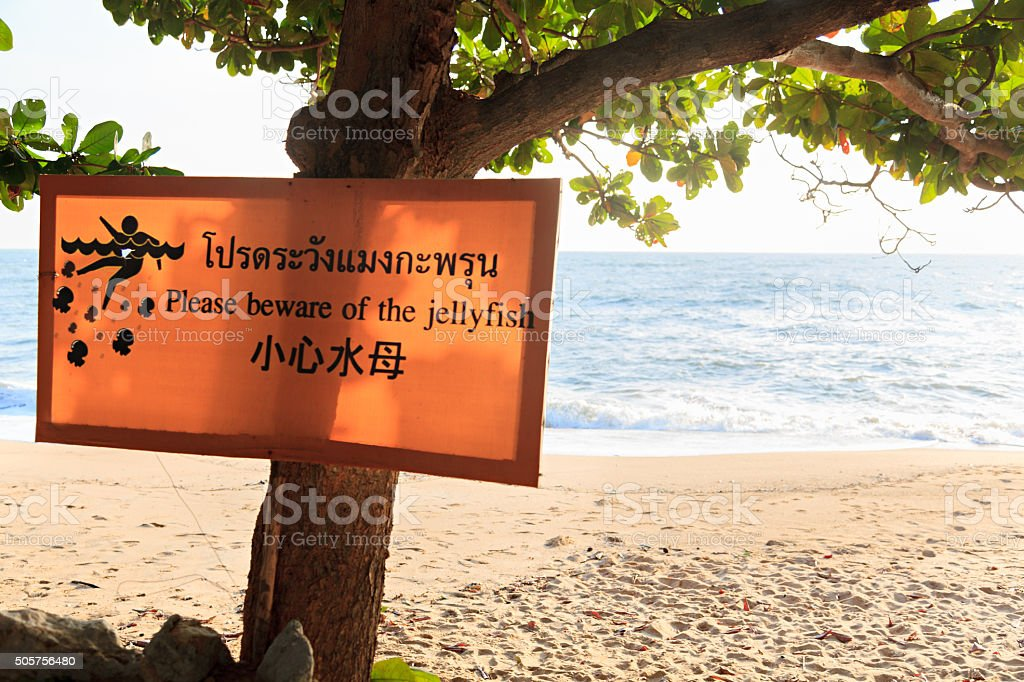 Jellyfish Warning in Thailand stock photo