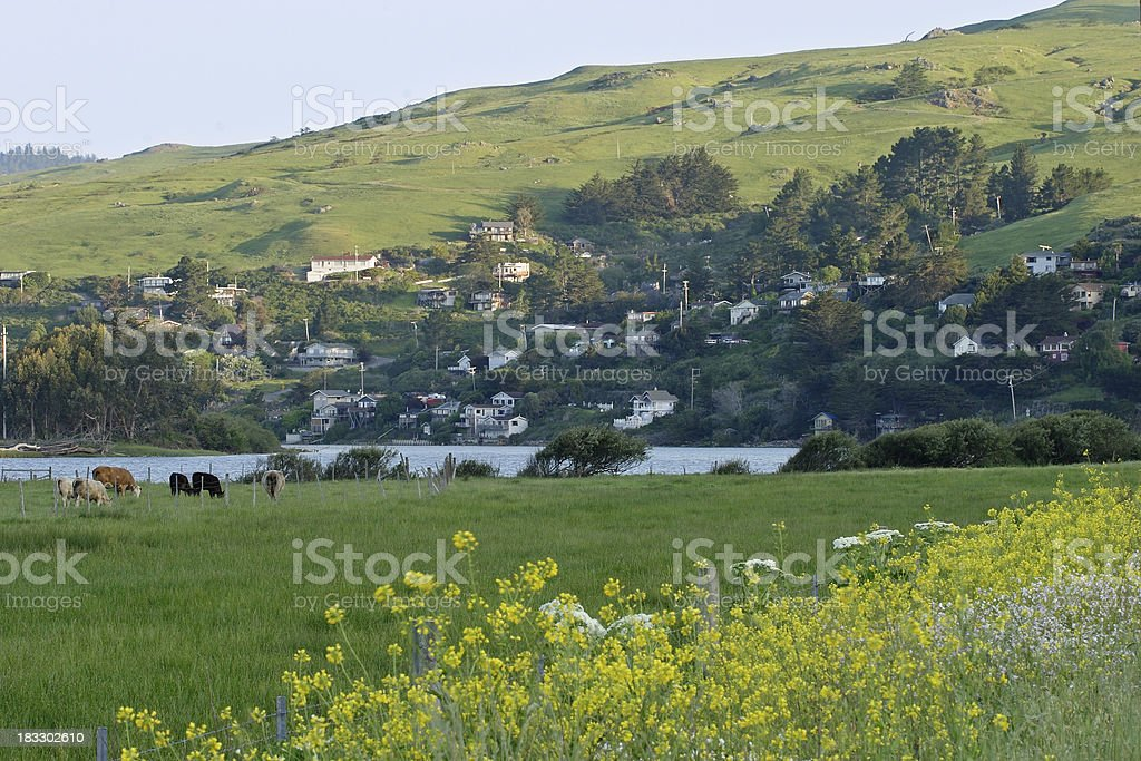Jenner, California stock photo