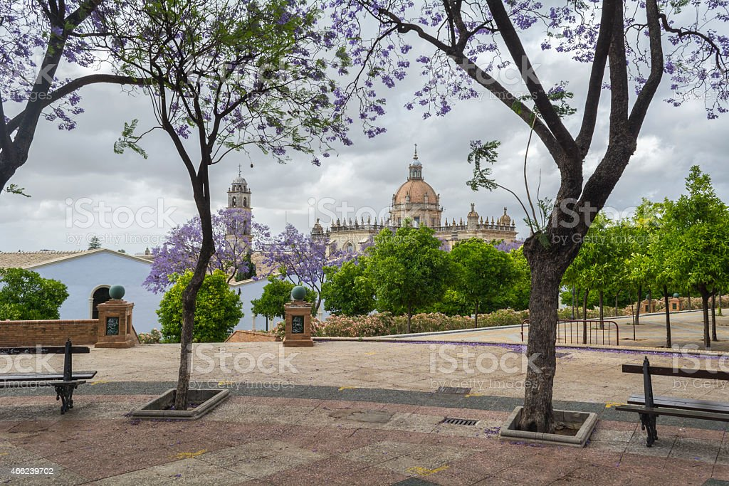 Jerez de la Frontera cathedral view from the temple mall stock photo