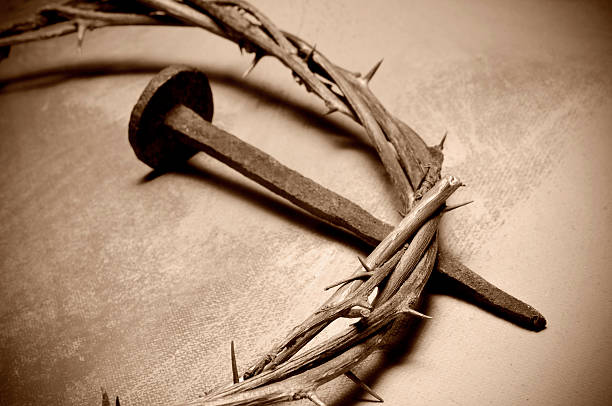 Crown Of Thorns Nail Thorn Crown Stock Photos, Pictures & Royalty ...
