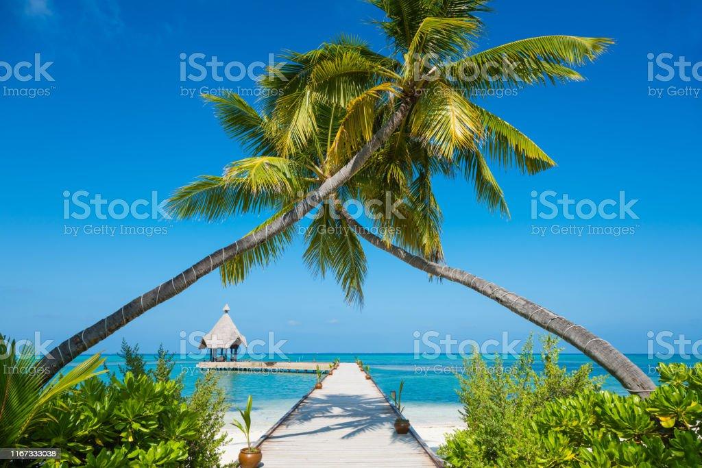 Jetty At Canareef Resort Maldives Herathera Island Addu