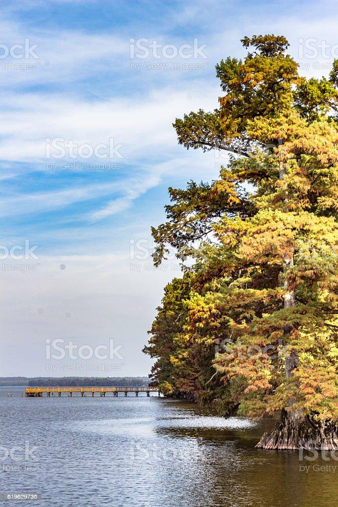 Jetty at Reelfoot Lake near Hornbeak Tennessee stock photo
