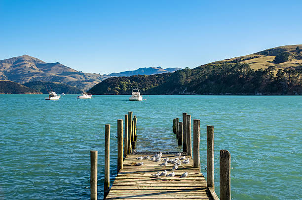 Jetty in Akaroa, south island of New Zealand. stock photo