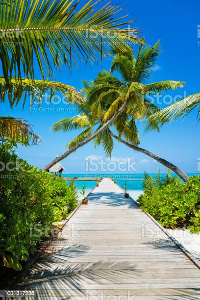 Jetty in maldives herathera island addu atoll maldives picture id1031317238?b=1&k=6&m=1031317238&s=612x612&h= 6t9a312i s3z7qojjj4j2lruqe8lwe3fwjhxnhlxco=