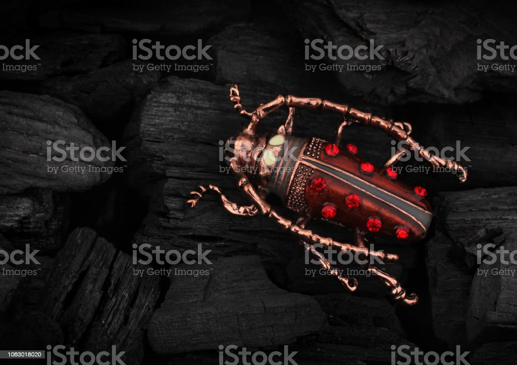 Jewelery bug brooch with gemstone on black coal background, copy space stock photo