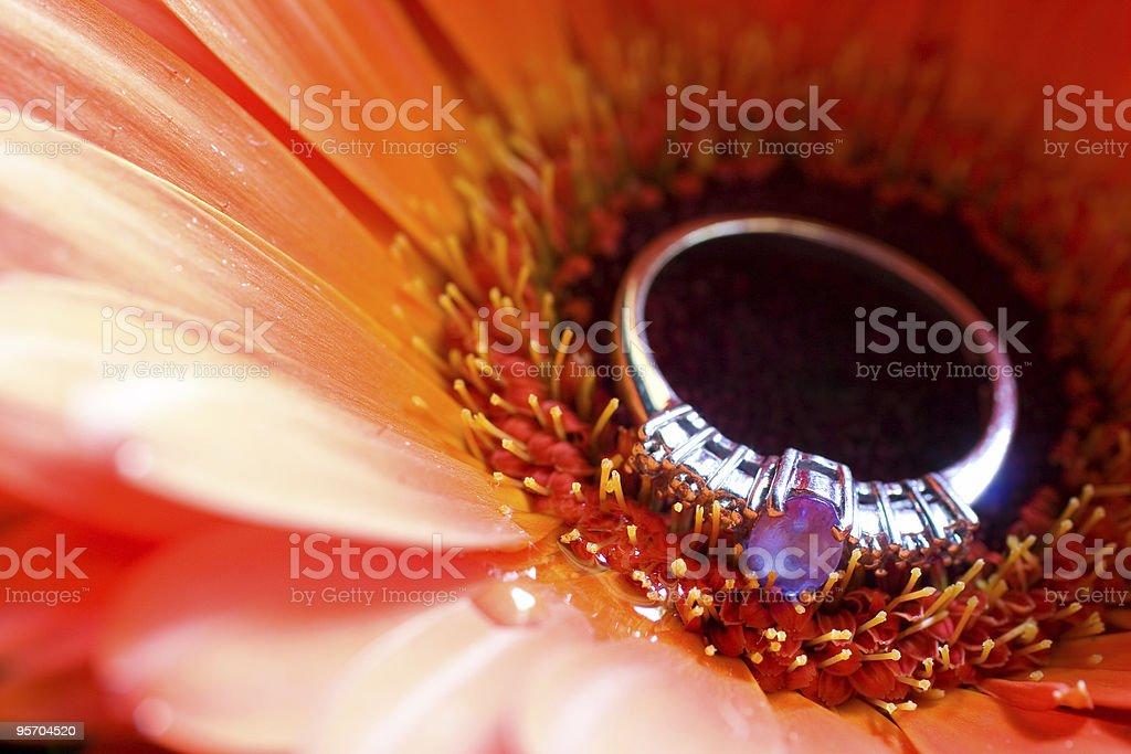 jewellery #2 royalty-free stock photo
