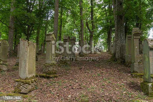 historic jewish Graveyard near Berlichingen in Hohenlohe, a area in Southern Germany at summer time
