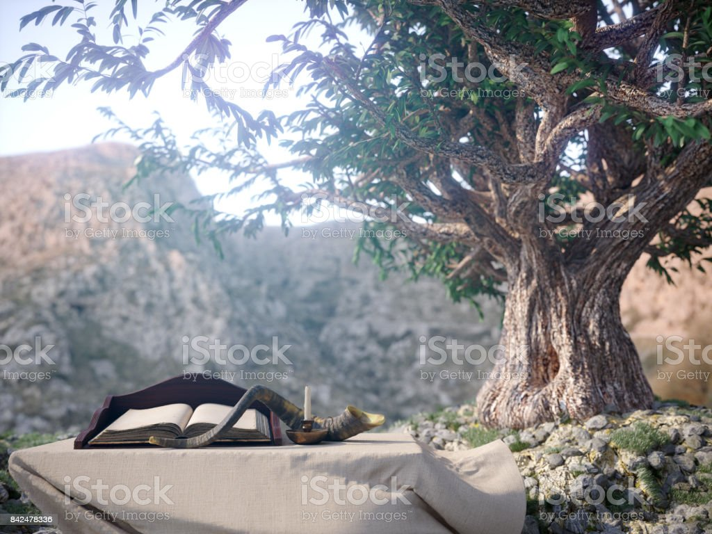 jewish holiday background with old book and olive tree landscape concept photo stock photo